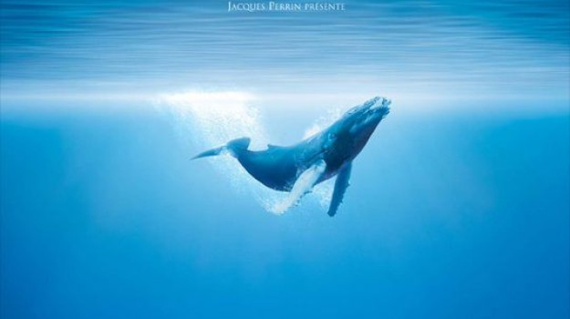 projection cinema film documentaire oceans